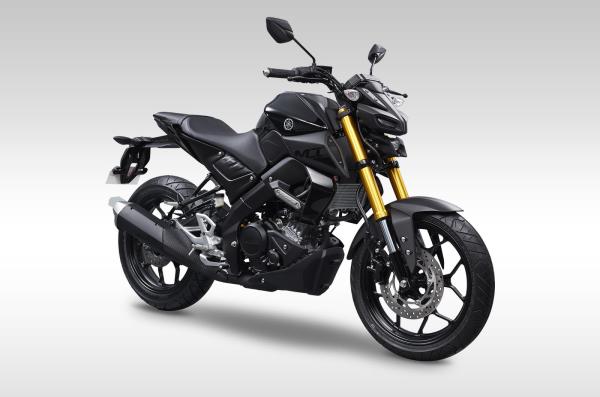 Yamaha MT15 -Yamaha TFX 150 - Yamaha Xabre 150 - Yamaha M-Slaz manual de taller